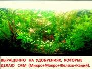 Удобрения - микро,  макро,  калий,  железо,  для растений. ПОЧТОЙ вышлю===